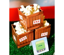 Bird Game TNT Favor Box Template - Video Game Party - Instant Download